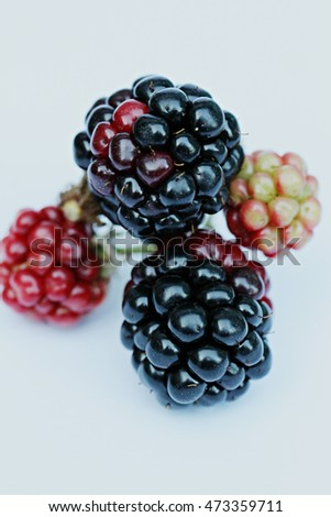 blackberry close-up on a white background 3