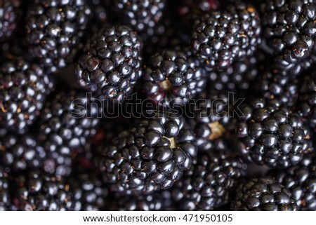 Blackberry closeup macro background