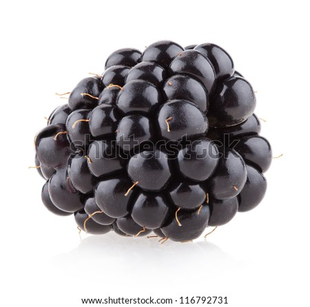 blackberry - fruit and food - stock photo