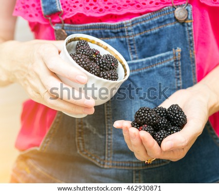 blackberry fruit  at the hands