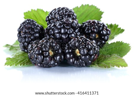 Blackberry fruit blackberries berry berries fresh fruits isolated on a white background - stock photo
