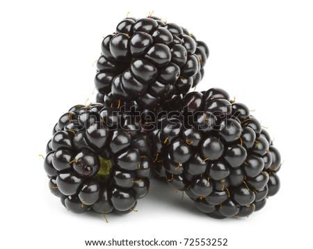 Blackberry isolated on white background - stock photo