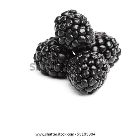 blackberry pile - stock photo