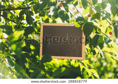 "Blackboard hanging on tree at garden with written text ""Garden"" - stock photo"