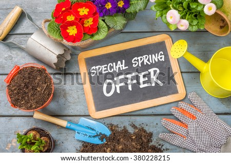 Blackboard on a plant table with garden tools - Special Spring Offer - stock photo