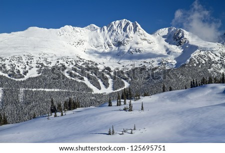 Blackcomb ski and snowboard Mountain view from Whistler, British Columbia, Canada