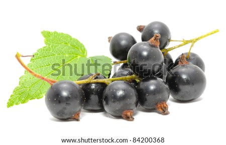 Blackcurrants with Green Leaf Isolated on White Background - stock photo
