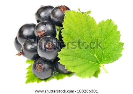 Blackcurrants with Green Leaves Isolated on White Background - stock photo