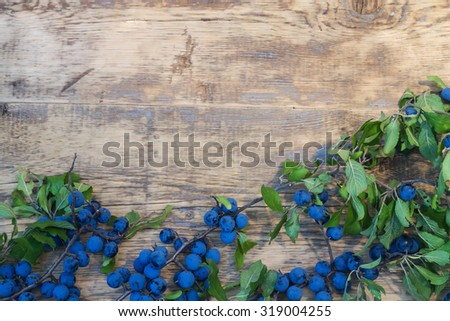 blackthorn branch with berries on wooden background - stock photo