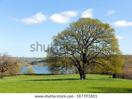 Blagdon Lake Somerset England UK a fishing lake and nature reserve - stock photo