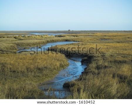 Blakeney saltmarshes, North Norfolk UK - stock photo