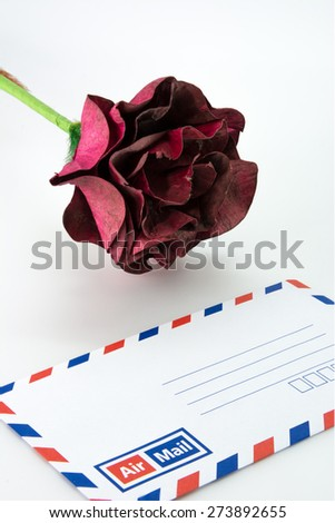 Blank airmail envelope with fake rose - stock photo