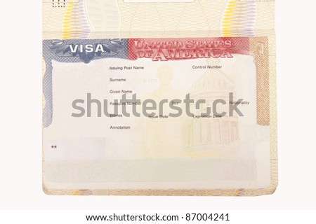 Blank American Visa - stock photo