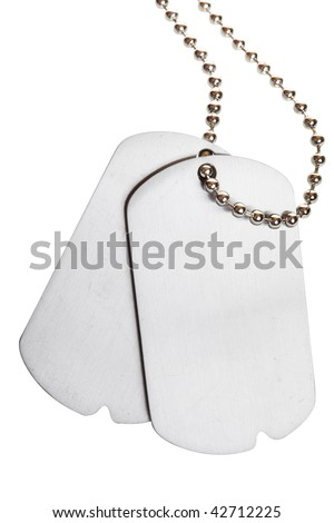 blank army dogtags isolated on white background - insert your own text