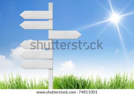 blank direction sign on the sun sky - stock photo