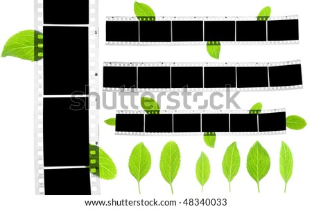 blank film strip with green leaves set - stock photo