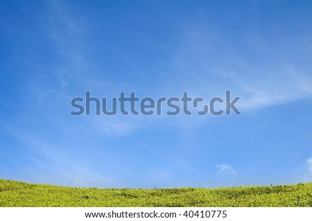 blank green field with blue sky for advertising purpose - stock photo