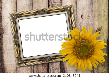 Blank Message board with sunflower and copy space or text - stock photo