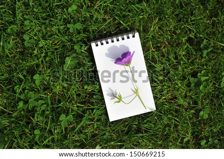 blank notepad with violet flower on grass field - stock photo