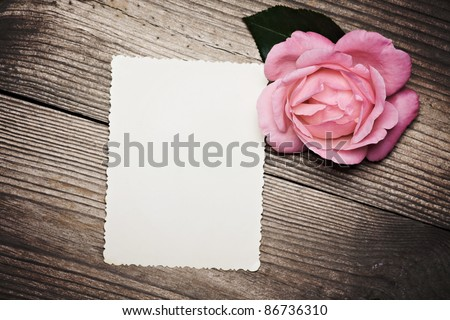 Blank old photo near pink rose on wooden background - stock photo