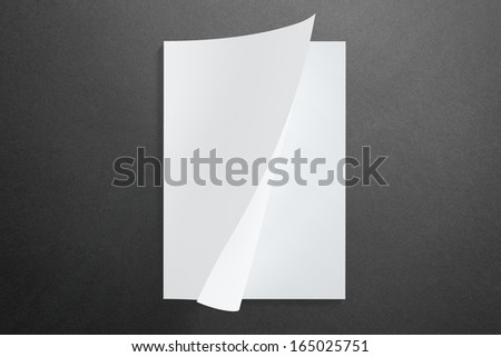 Blank opened Magazine on dark Background with soft shadows