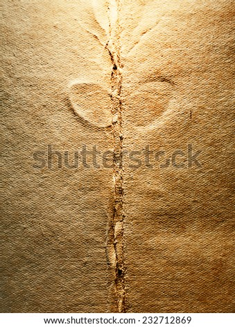 blank pages of an old book - stock photo