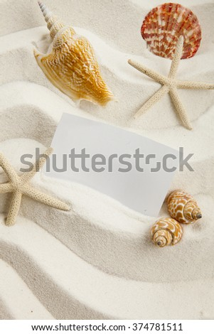 Blank paper and starfish and and shells on sand, summer concept