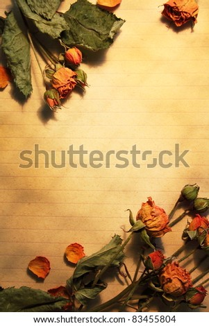 Blank paper, framed dried flowers - stock photo