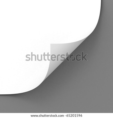 blank paper sheet over gray background - stock photo