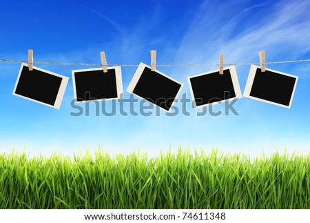 Blank photographs hanging on clothesline against blue sky over green grass - stock photo