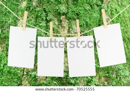 Blank pieces of paper and wooden clothespins on tree background