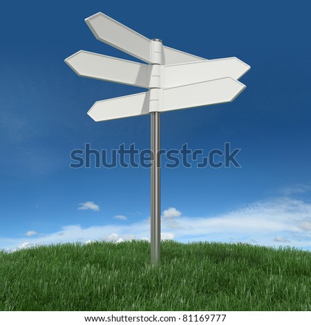Blank signpost on grass with sky background - stock photo