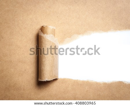 Blank torn brown paper with space for text on white background,copy space - stock photo