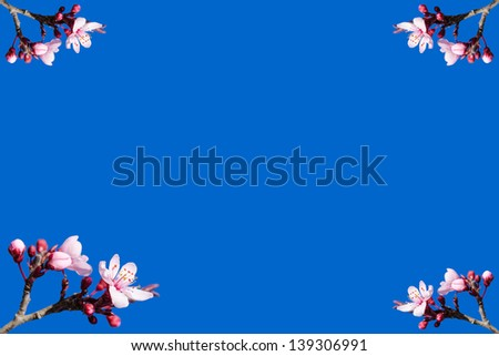 Blank vignette with spring blossom on blue sky background - stock photo