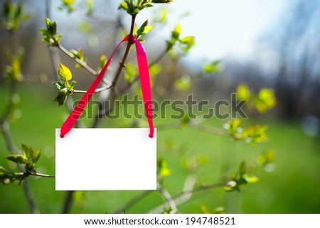 Blank white business card on tree with green blurry background. Safe environment. - stock photo
