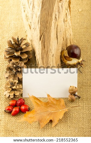 Blank white paper sticker with autumn leaves, fir cones, rosehip, seabuckthorn, acorns, chestnuts and oak split on old rustic hemp fabric background - stock photo