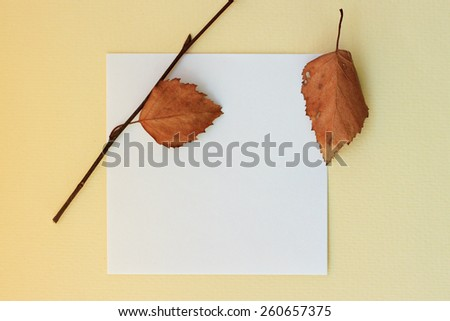 Blank white piece of paper for notes with dry foliage - stock photo