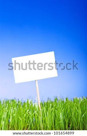 Blank white sing on neatly trimmed green grass against a blue background.