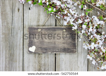 Blank Wood Sign Country Heart Spring Stock Photo Royalty Free