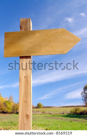 Blank wooden signpost over blue sky