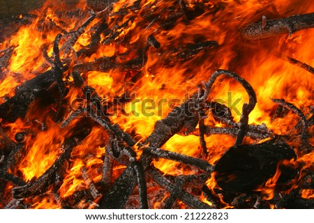 blazing fire consuming branches - stock photo