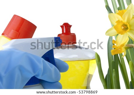 Bleach, washing up liquid, and a spray bottle beside some daffodils.  A hand in a rubber glove reaches in from lower left frame to pick up a cleaning product.  White background. - stock photo
