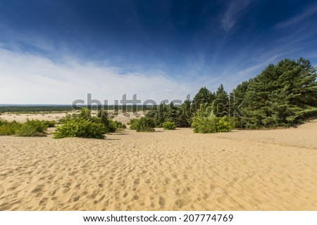 Bledow Desert, an area of sands between Bledow and the village of Chechlo and Klucze in Poland.  - stock photo
