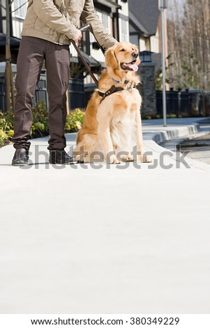 Blind man with guide dog on sidewalk - stock photo