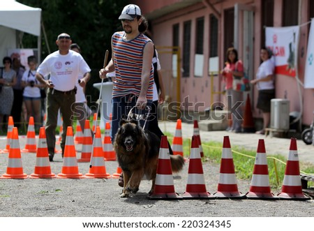 Blind man with his guide dog/Sofia, Bulgaria - June 25, 2014: A blind man is training with his guide dog. - stock photo