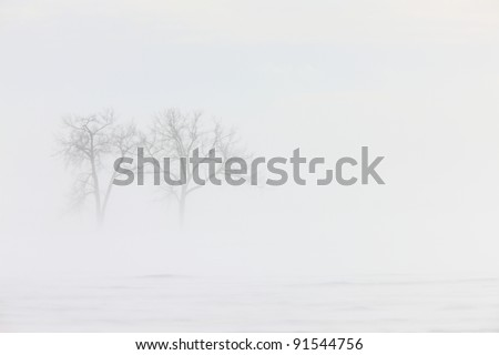 Blizzard Saskatchewan - stock photo