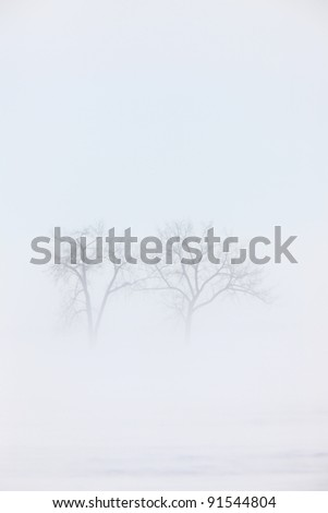 Blizzard Saskatchewan - stock photo