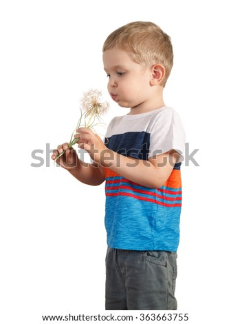 blond boy holding giant Dandelion. isolated on white