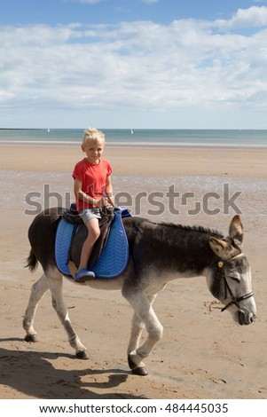 Blond boy riding on a donkey at the beach