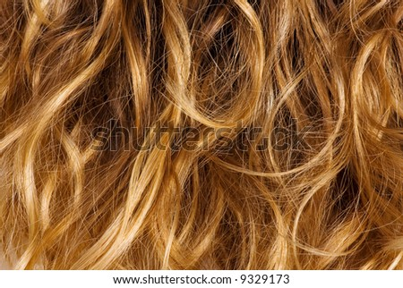 Blonde curly hair - background texture - stock photo